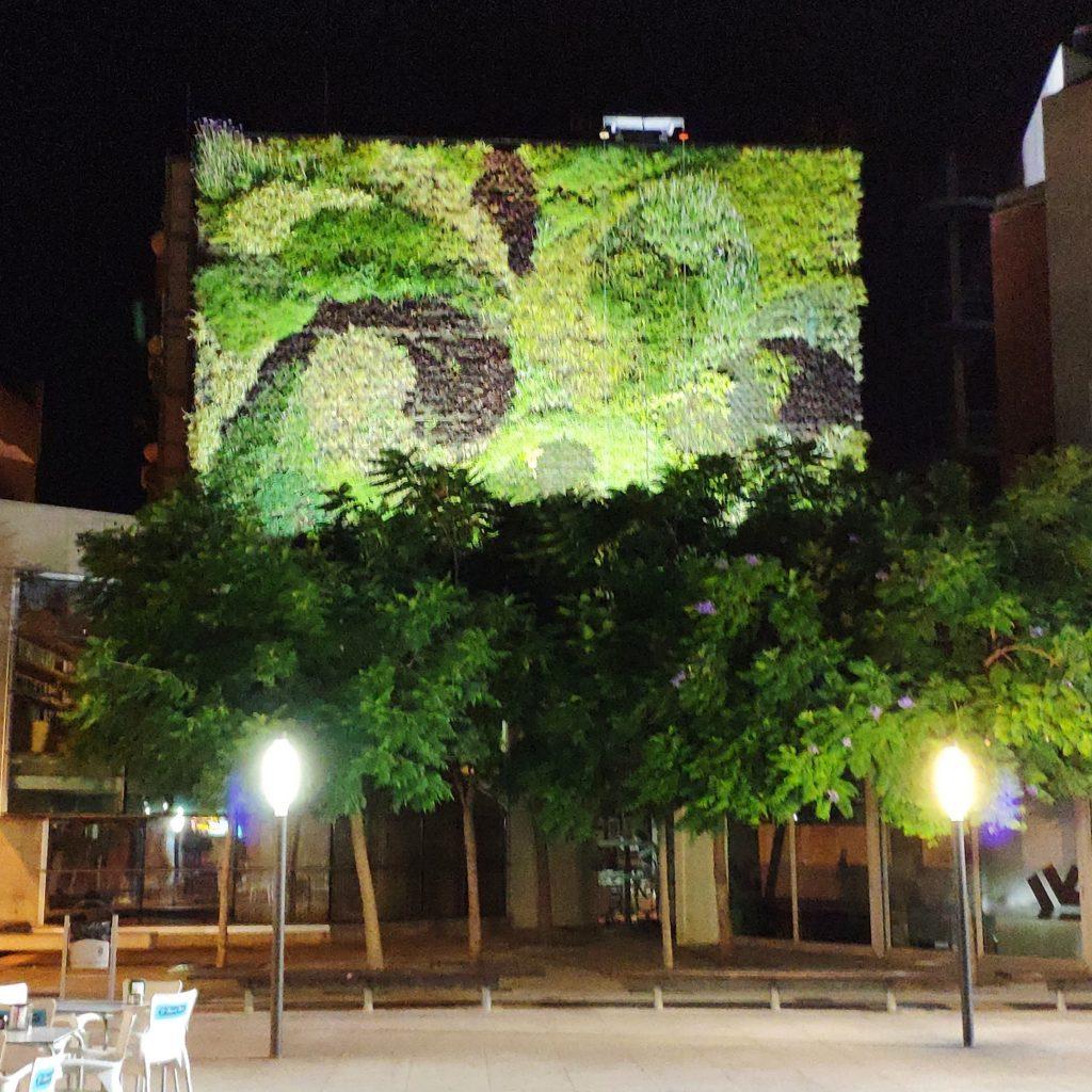 jardín vertical iluminado