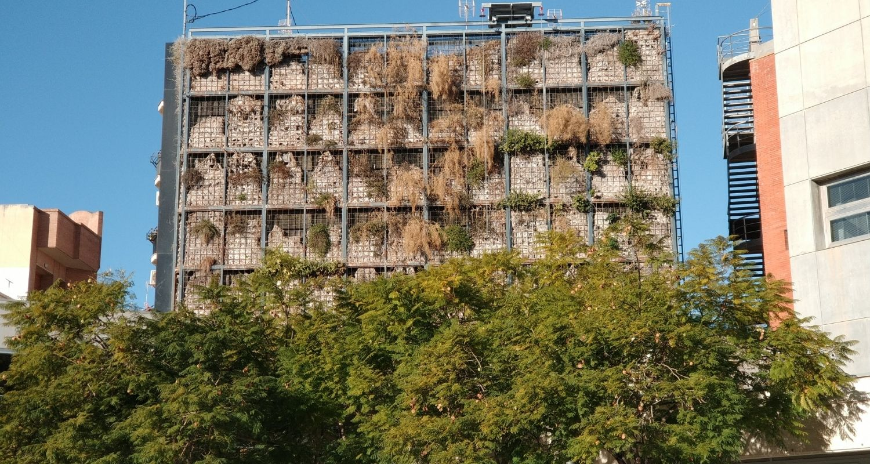 Errores de un jardín vertical
