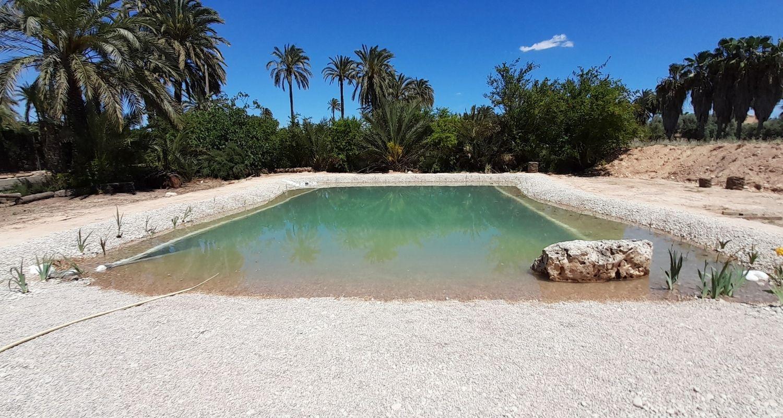 Biopiscina o piscina ecológica con playa