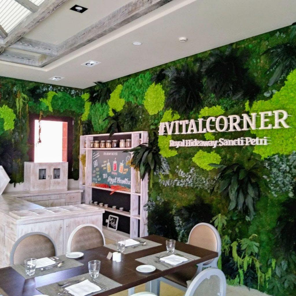 Planta preservada retail restaurante